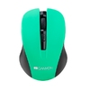 Mouse Canyon Wireless CNE-CMSW1GR, Black/Green